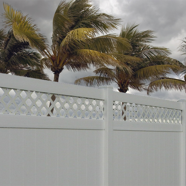 Hollingsworth-with-stormy-palms